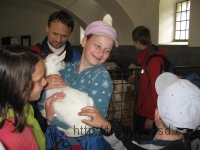 120609_v_kozi-farma-ratiborice